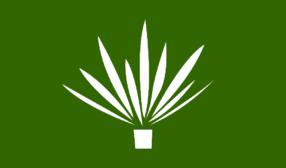 naturalarearugs.com