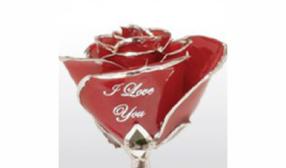 LoveIsARose.com